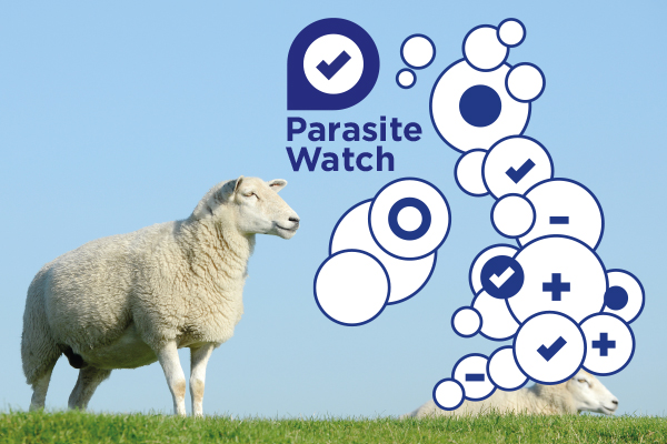 Parasite Watch: a free service for UK sheep farmers
