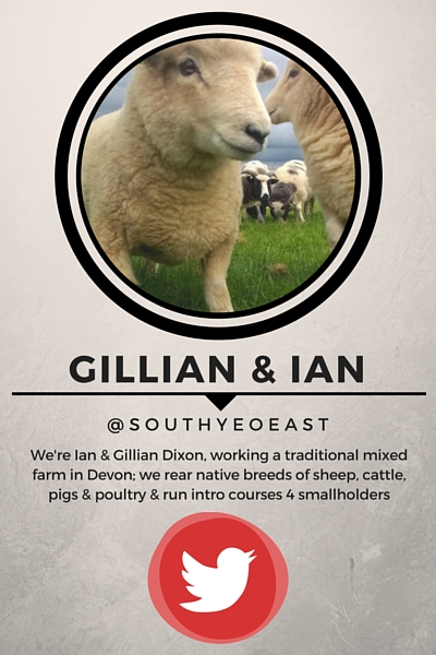Lambing16 Key Stories From the Season Part 2 Gillian Ian