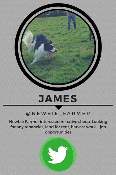 Lambing16 Key Stories From the Season Part 2 James