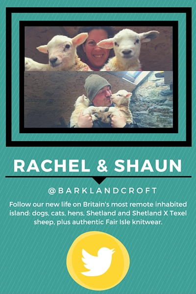 Lambing16 Key Stories From the Season Part 2 Rachel Shaun